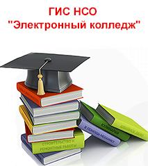 """ГИС НСО """"Электронный колледж"""""""